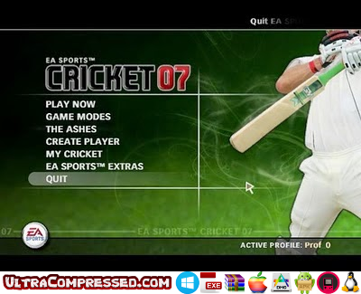 EA Cricket 2007 Highly Compressed Download